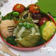 【みどりのお弁当】キャベツと野菜の仲間弁当~プチオフ会~