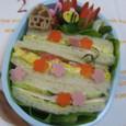 初めてのサンドイッチ弁当~春~